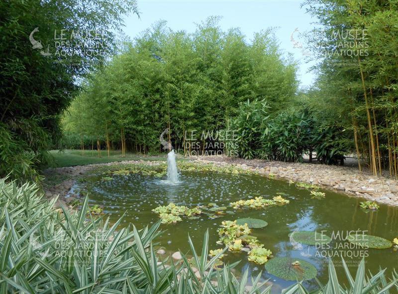 Les jardins aquatiques triplancar - Les jardins aquatiques saint didier sur chalaronne ...