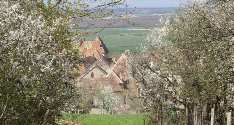 Au loin, les toits des maisons du vieux bourg de Gy