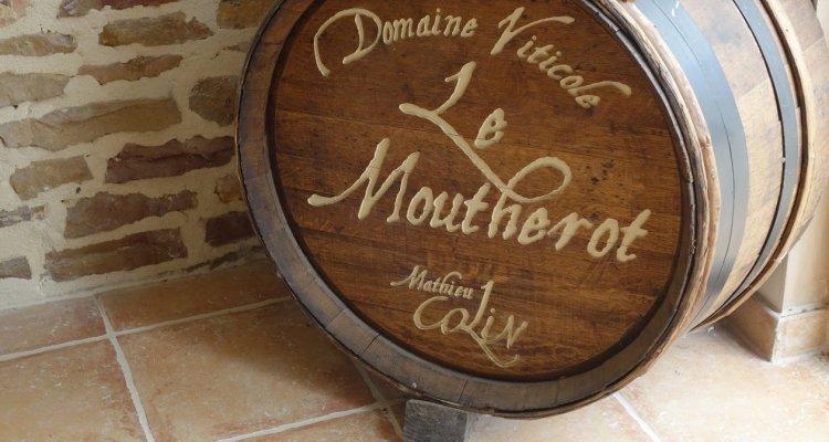 Domaine viticole du Moutherot