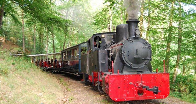 Locomotive Jung