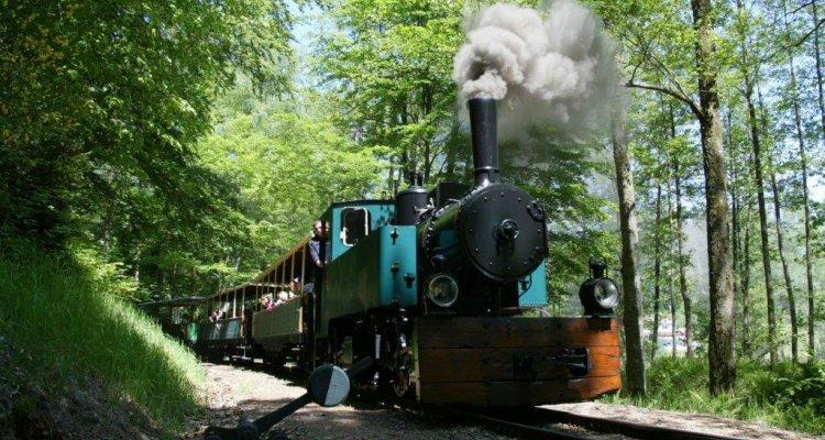 Locomotive Mallet
