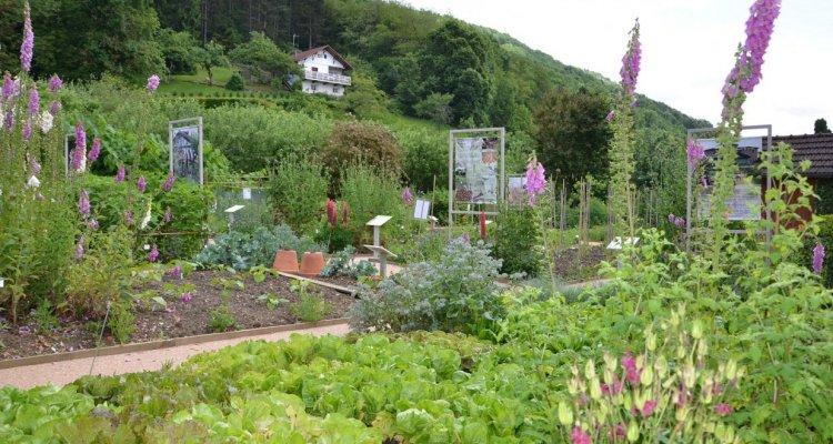 Jardin musée révermont