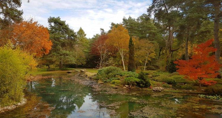 Arboretum Asiatique en automne