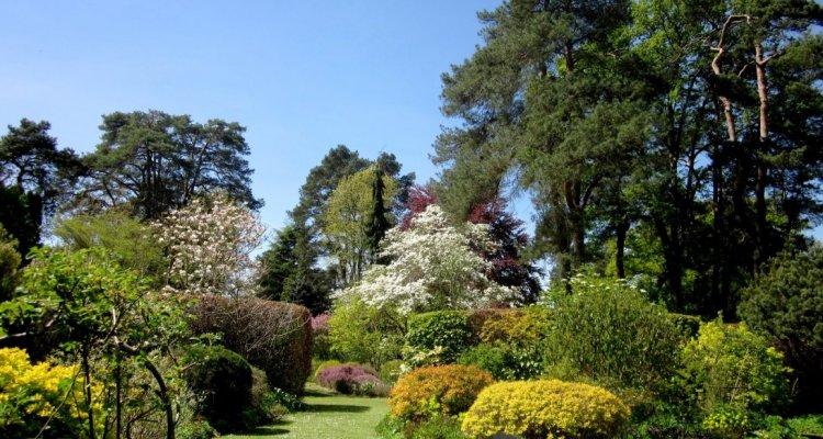 Visite de l'Arboretum