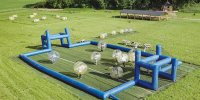 Bubble foot, Jumping Forest