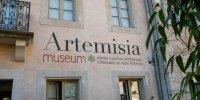 Artemisia museum Accueil