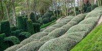 Les Jardins d'Etretat: Jardin La Manche