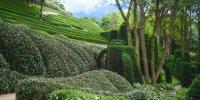 Les Jardins d'Etretat: Jardin d'Aval