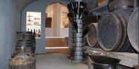 Vignes et cavets musée du révermont