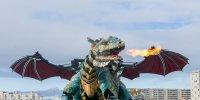 rencontre dragon calais tourisme groupe