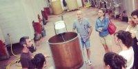 Visite du chai du Clos Troteligotte