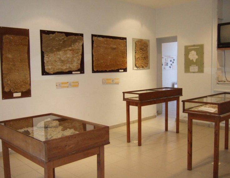 Musée du Savignéen présentation des faluns