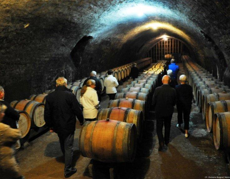 Visites de caves Domaine Borgnat