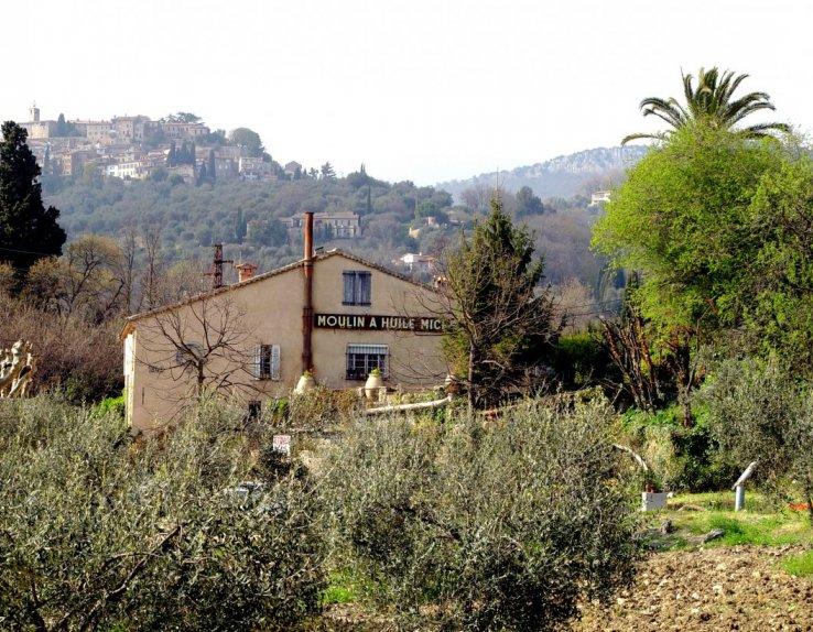 Moulin Fortune Arizzi